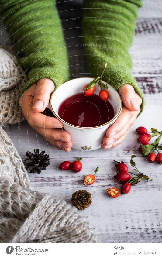 Frau hält eine Tasse mit Hagebuttent Tee in ihren Händen Herbst Schwache Tiefenschärfe Heißgetränk Hygge halten wärmen Winter Vitamin Wollpullover grün rot