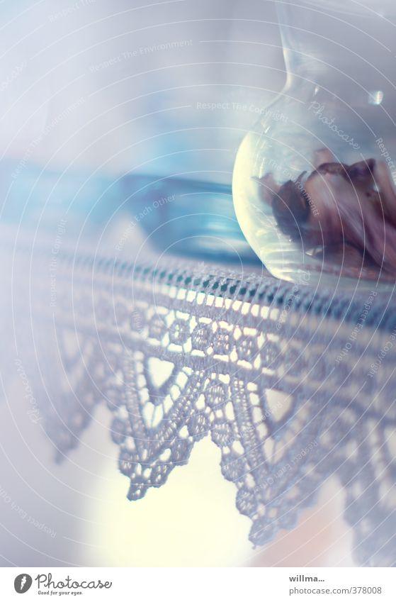 einrichtungssache blau hell Wohnung Glas Häusliches Leben Dekoration & Verzierung zart türkis Schalen & Schüsseln Spitze Blütenblatt getrocknet Vase Pastellton Vitrine