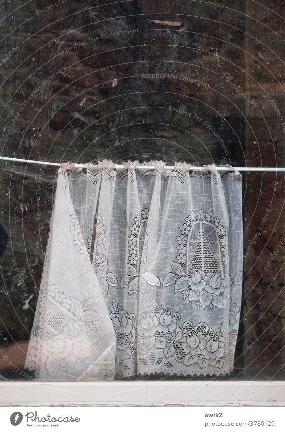 Fenster im Fenster Gardine Detailaufnahme Totale Textfreiraum oben trist lost places Gedeckte Farben Muster Strukturen & Formen Menschenleer Farbfoto