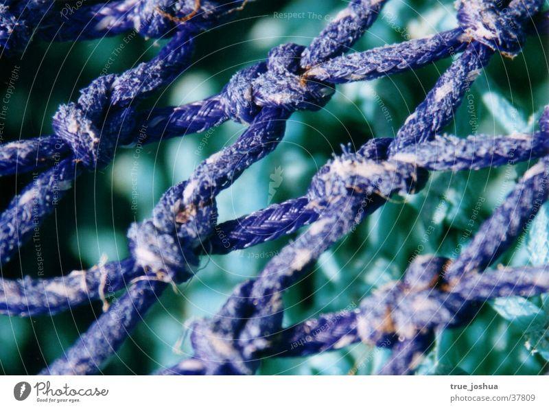 Lebensnetz Natur blau Netz Freizeit & Hobby Knoten Schlaufe