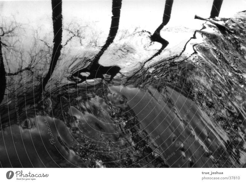 Wasserlauf sw Natur Winter See Stimmung