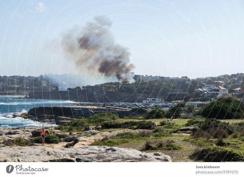 Buschfeuer mit Rauch im Dunningham-Reservat an der Küste, Sydney, Australien Feuer Badestrand Dunningham-Reserve Flammen Gordons Bucht dunkel Desaster schwarz