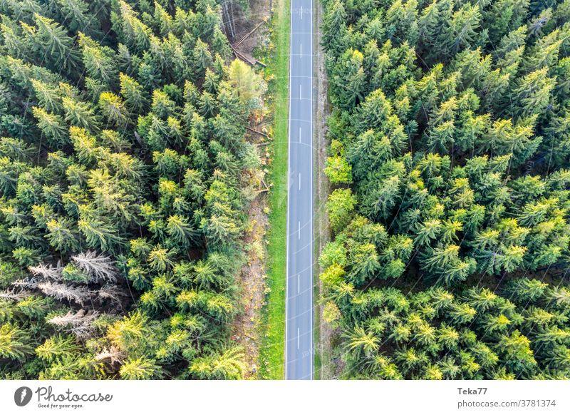 eine Waldstraße von oben Straße von oben forst von oben Transport Landstraße PKW Lastwagen Autos Weg shadown Sonne Sonnenwald Natur Nadelwald Bäume Baum Sommer