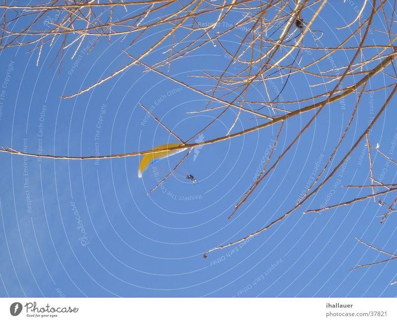 Luft! Gleitschirm gelb Schweben Himmel blau fliegen