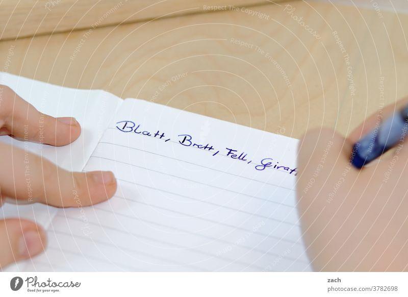 wen die Muse küsst |Poet schreiben Stift Schule Schreibstift lernen Bildung Kindheit Schulkind Hausaufgabe lesen Hand Papier Schüler Wissen Konzentration