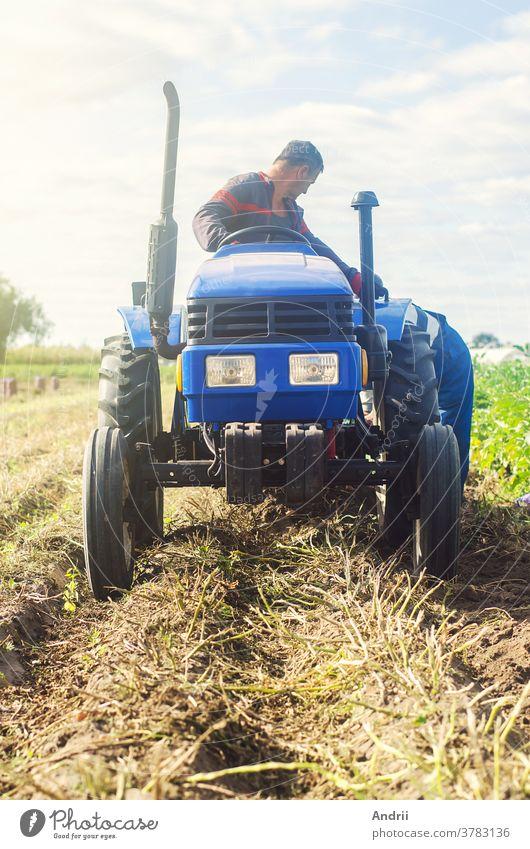 Landwirt auf einem Traktor gräbt Kartoffeln vom Boden aus. Extrahiert Wurzelgemüse an die Oberfläche. Kartoffeln im Herbst ernten. Landwirtschaft und Ackerland. Landwirtschaftliche Arbeiten auf dem Feld. Arbeiten auf dem Land.