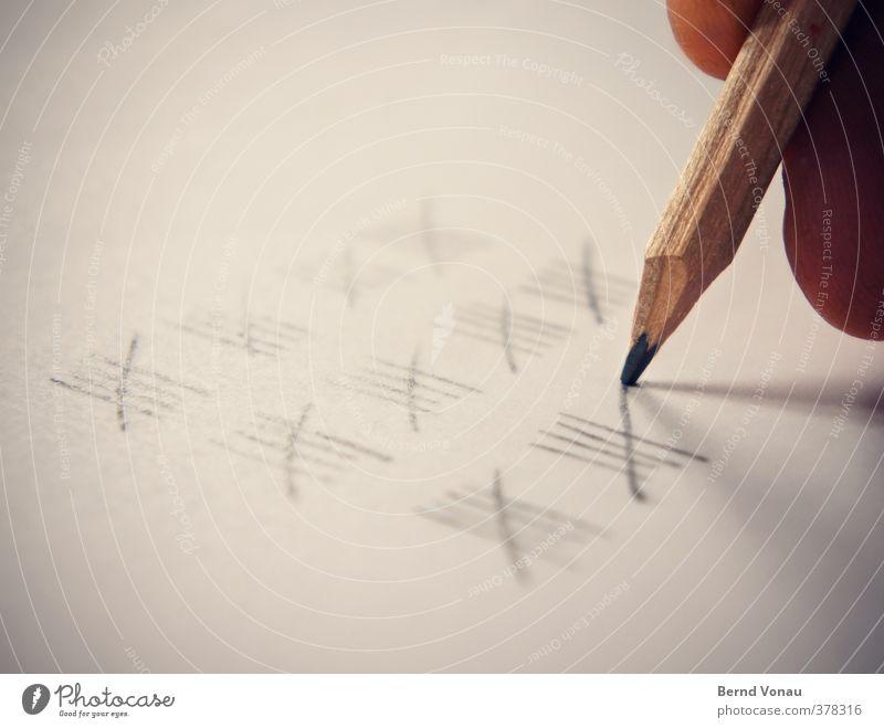 ...und 50! Finger nah Ausdauer Ordnungsliebe Bleistift geduldig schreiben grau beige braun Papier zählen Statistik mehrere Schreibstift Ziffern & Zahlen Zeit