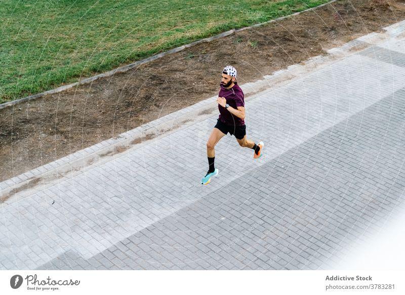 Männlicher Athlet läuft auf Asphaltstraße im Park laufen par Läufer Training Mann Herz Sportler Sommer Aktivität männlich urban Hügel Sportkleidung Fitness