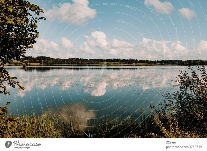 See im Allgäu see seeufer natur landschaft spiegelung refektion wolken himmel blau grün gras sträucher bäume weite weitwinkel sommer sonne wärme allgäu