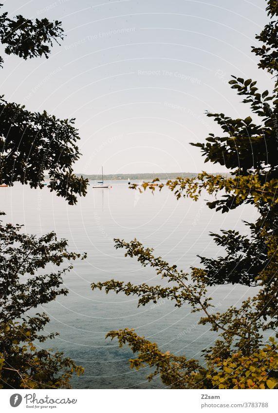 Starnberger See wassersport see spiegelung Reflexion & Spiegelung bewegung erholung ruhe entspannung baden wolken blau bayern urlaub ferien reise Außenaufnahme