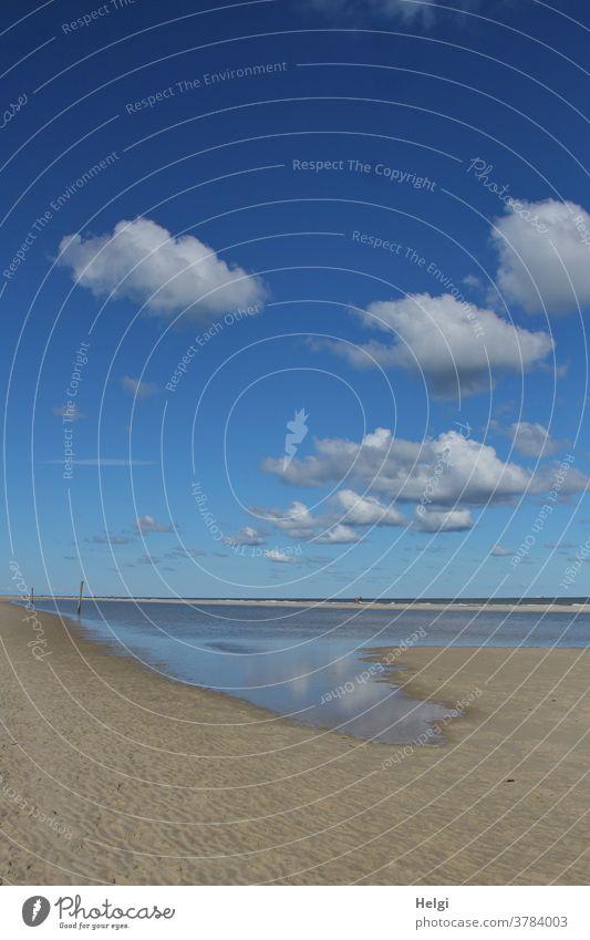 Spätsommer am Meer - einsamer Strand auf der Nordseeinsel mit  Wasser, blauem Himmel und Wölkchen Insel Wangerooge Sand Priel Sandbank Spiegelung Reflexion