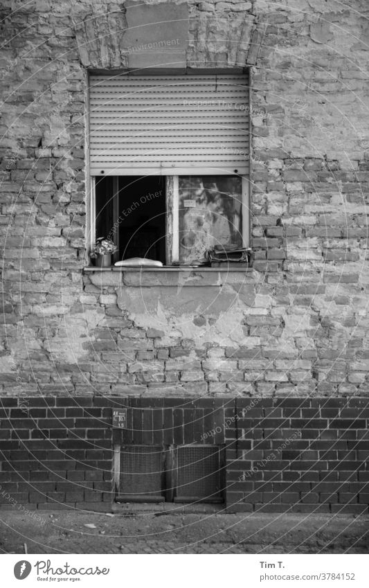 Fenster Babelsberg s/w Schwarzweißfoto window b/w b&w Einsamkeit Architektur Detailaufnahme B&W Altbau Fassade Potsdam dunkel