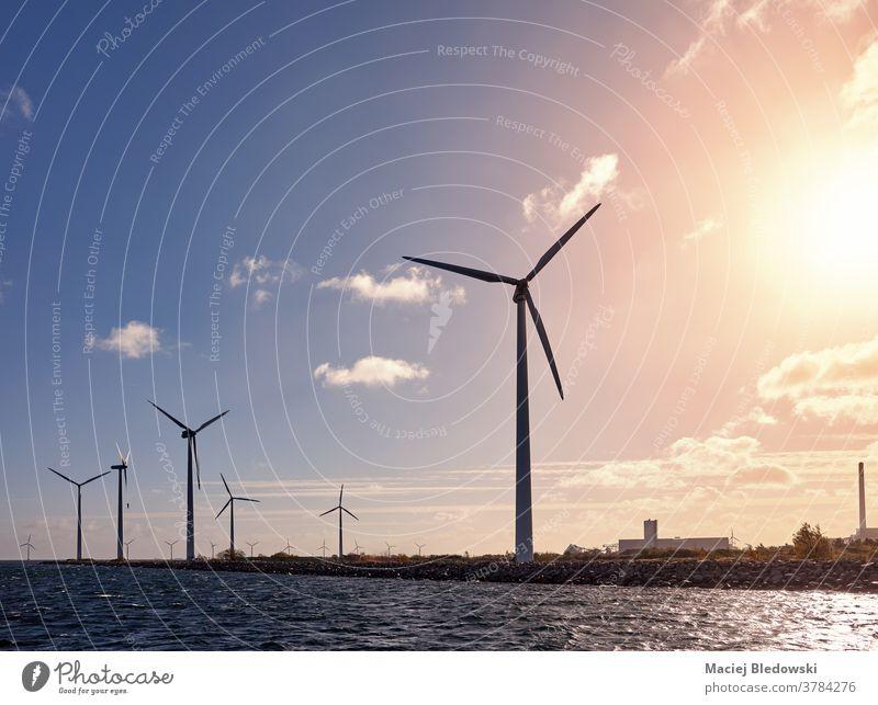Windturbinen an der Küste bei Sonnenuntergang. Turbine Ökostrom Wasser Energie MEER Industrie Dänemark Landschaft Erzeuger Umwelt Natur Himmel Konzept Bild