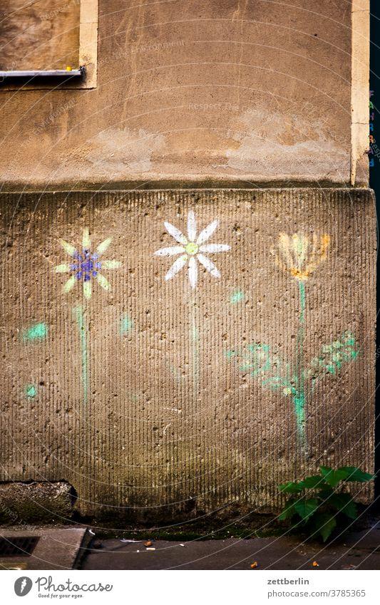 Altbaufassade mit aufgemalten Blumen altbau außen brandmauer fenster haus himmel himmelblau hinterhaus hinterhof innenhof innenstadt mehrfamilienhaus
