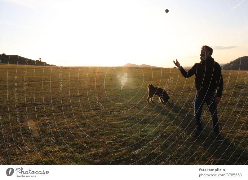 Junger Mann mit Ball spielend und Hund auf weiter Wiese junger Mann Mensch freizeitgestaltung Außenaufnahme Spielen Mensch und Hund schwarzer hund Tierliebe