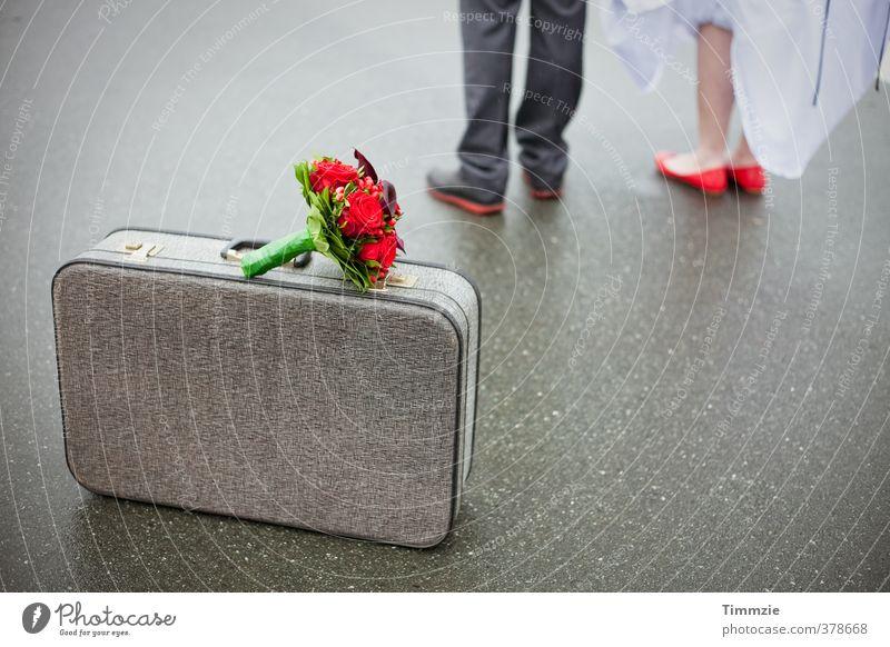 Mai-Hochzeit Mensch Jugendliche Ferien & Urlaub & Reisen Erwachsene 18-30 Jahre Paar Freundschaft warten Zukunft Romantik Zusammenhalt Leidenschaft Verliebtheit