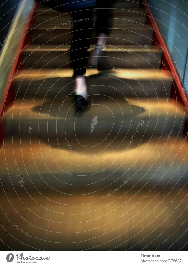 ...und weg! Mensch feminin Frau Erwachsene Beine 1 Treppe Schuhe gehen ästhetisch Geschwindigkeit mehrfarbig Gefühle selbstbewußt Eile Farbfoto Innenaufnahme
