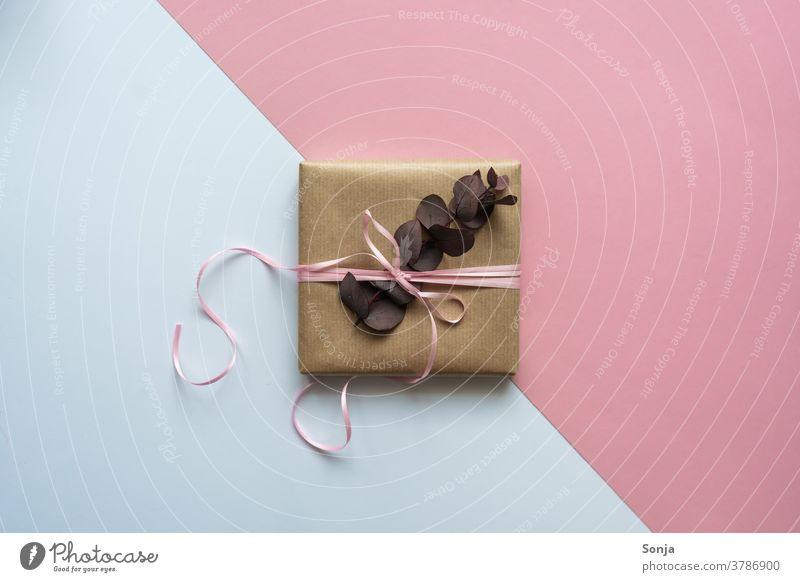 Ein Geschenk mit rosa Schleife und Eukalyptus auf einen rosa und weißen Hintergrund Geburtstag Weihnachten & Advent Menschenleer Verpackung Paket Vorfreude
