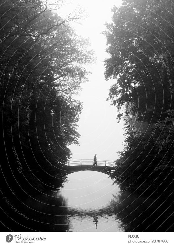 Ein Mann geht im Nebel über eine Brücke, Schwarzweiß Baum Außenaufnahme grau schwarz Herbst Schwarzweißfoto schwarzweiß schwarzweiss in farbe Einsamkeit allein