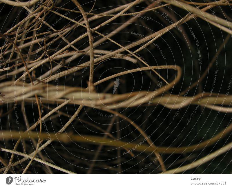 Lines schwarz dunkel Linie hell braun durcheinander quer verwickelt