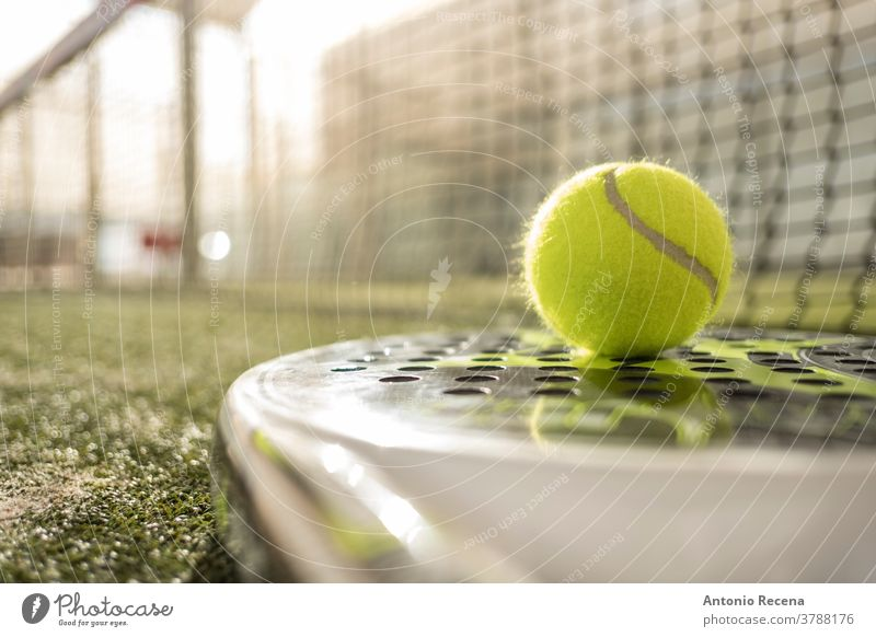 Paddletennisobjekte und -platz. Paddeltennis Padel Sport Remmidemmi Gericht Ball Tennis Erholung Rasen Netz Streichholz im Freien Lebensstile spielen Tennisball