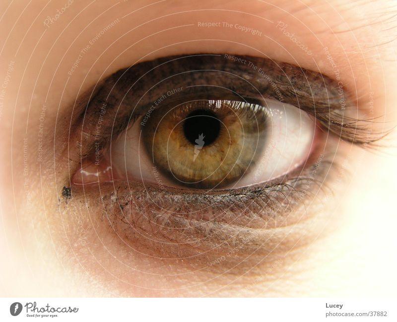 Blickfang grün gelb Schminke Kajal Schwung Frau Auge Detailaufnahme verschmiert Regenbogenhaut