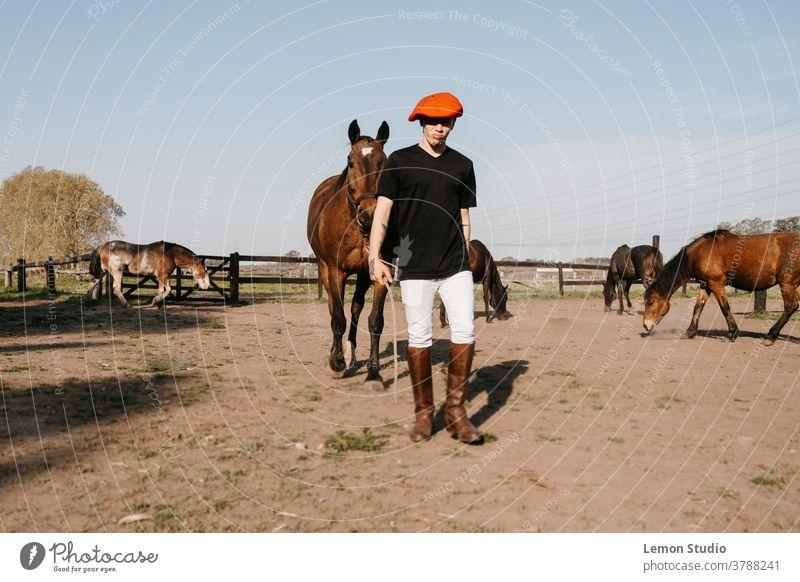 Mann, der zu Fuß geht und das Pferd zum Stall trägt laufen braun Freie Luft Feld Gras grün Himmel blau Bäume Patagonien Frühling Reiten Tag Tier drei Pferde