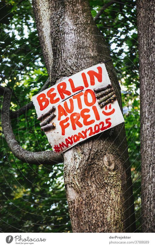 Ein Baum hält ein Schild mit dem Wunsch nach einem autofreien Berlin Starke Tiefenschärfe Schatten Licht Morgen Textfreiraum unten Textfreiraum oben