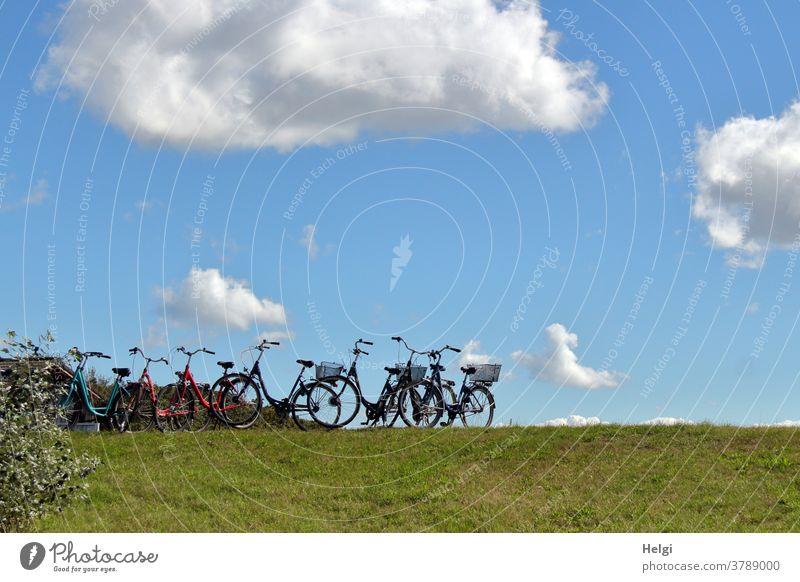 Fahrradparkplatz - viele Fahrräder stehen auf einem Weg vor den Dünen Rad Radfahren Fahrradfahren Außenaufnahme Wiese Wolken Himmel Sträucher Insel Nordseeinsel