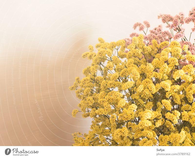 Getrocknete rosa und gelbe Blumen in weißer Vase Herbst getrocknet Innenbereich Saison Blumenstrauß Ordnung Dekor heimwärts natürlich Erntedankfest Wand Farbe