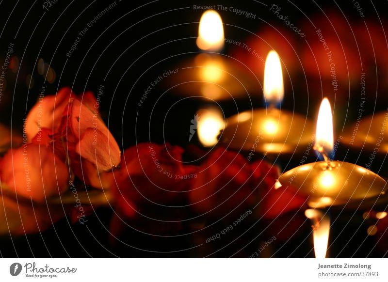 Schwimmkerzen Kerze Rose Licht Physik Dinge Wärme gold orange Im Wasser treiben