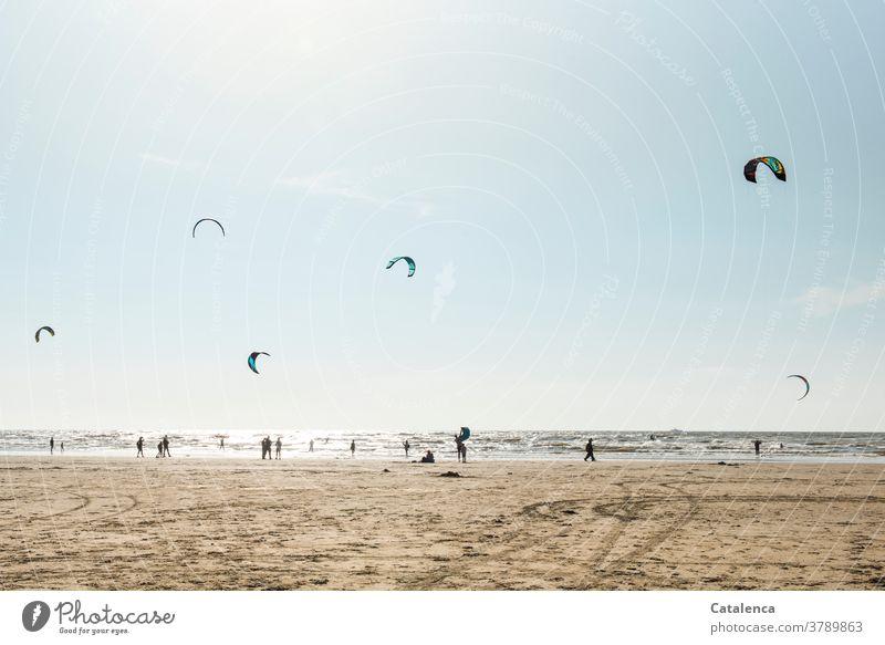 Kiter an einem windigen Tag am Strand Meer Küste Brandung Wellen Nordsee Himmel Horizont Personen Sport Urlaub Kitesurfen Sandstrand Blau Braun