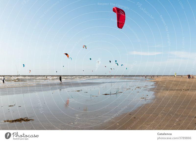 Noch mehr Kiter am Stand an einem windigen Nachmittag Braun Blau Sand Sandstrand Kitesurfen Urlaub Sport Personen Horizont Himmel Nordsee Wellen Brandung Küste