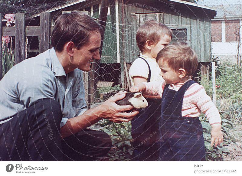 Das Meerschweinchen in Opas Garten. Kind Kindheit Kindheitserinnerung Kindererziehung Mädchen niedlich klein Mensch Spielen Freude Glück Kleinkind Fröhlichkeit