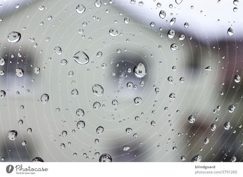 Tears of Heaven Regen Regentropfen Glas Scheibe Spiegelung nass Wasser Reflexion & Spiegelung Tropfen Haus Schwache Tiefenschärfe Makroaufnahme glänzend feucht
