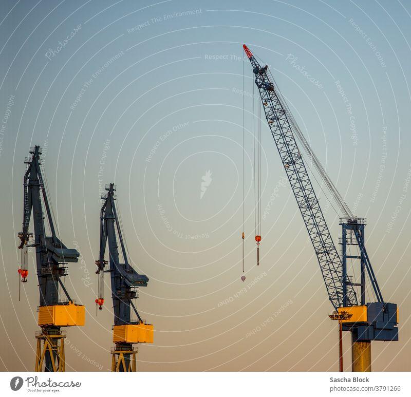 3 kräne Docks am Hafen von Hamburg 2018 Sommer kran Industrie Industrieanlage tranport hafen hafenarbeit container containterterminal dock