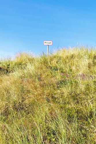 privatsphäre | lebensnotwenig Düne Hügel schild Privatspähre Abstand stoppen Durchgangsverbot Grundstück Nordsee Dünengras Himmel blau Natur Landschaft Sommer