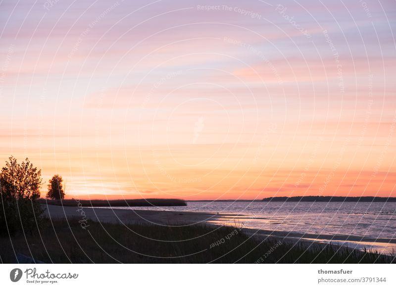 Abend am Meer, Sonnenuntergang, eine schöne Bucht. Sommer Natur Himmel Wolken Wasser Küste Landschaft Strand Menschenleer Stimmung Horizont melancholisch Bäume