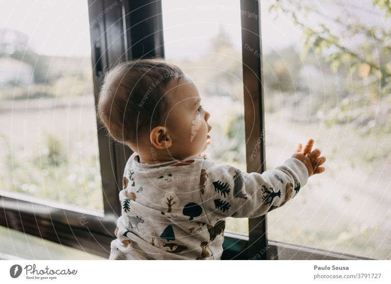 Kleinkind am Fenster im Innenbereich Familie & Verwandtschaft Baby Kind Liebe heimwärts Freude Glück Eltern Zusammensein niedlich Neugier unschuldig