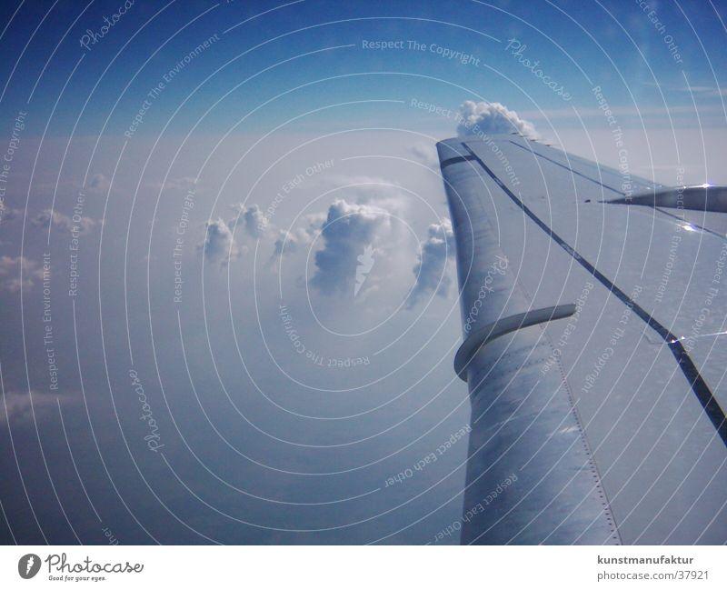 über den wolken Flugzeug Wolken Europa Himmel Flügel oben
