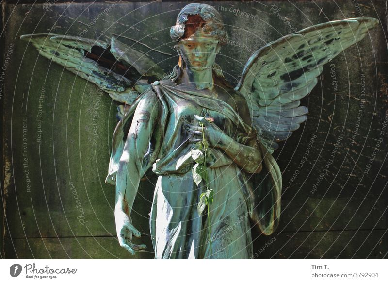 Erschossener Engel Grab Friedhof Trauer Tod Grabstein Vergänglichkeit Beerdigung Traurigkeit Außenaufnahme Glaube Grabmal Menschenleer Farbfoto