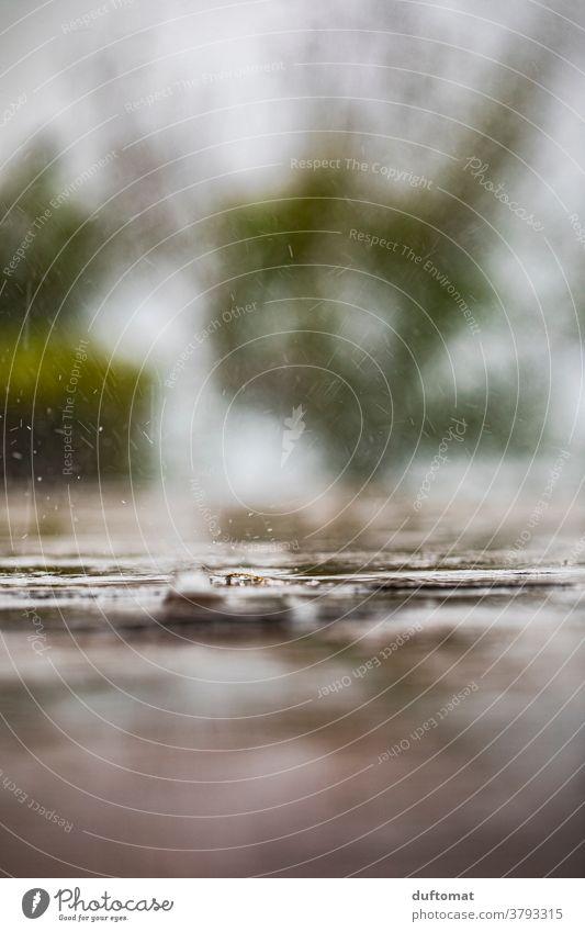 Makroaufnahme von Regentropfen die auf den Boden prasseln nass Tropfen Wasser Natur Wassertropfen Nahaufnahme Detailaufnahme Außenaufnahme Wetter Menschenleer