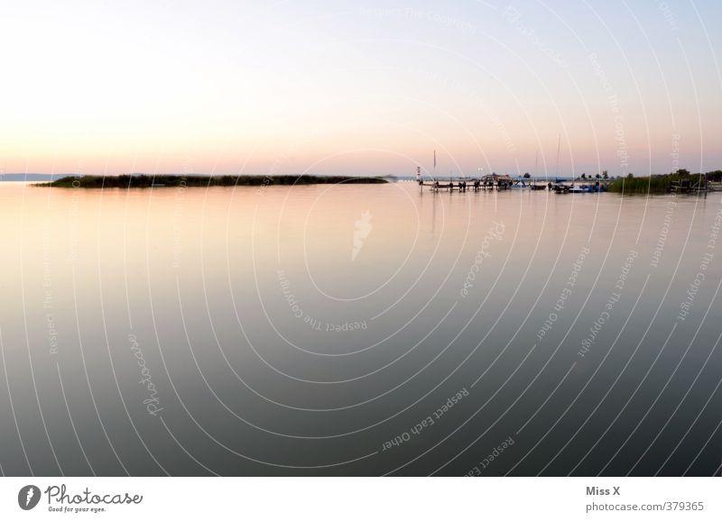 Stiller See Natur Ferien & Urlaub & Reisen Wasser Sommer Erholung Landschaft ruhig Ferne Küste Freiheit Stimmung Seeufer Sommerurlaub Schilfrohr Steg