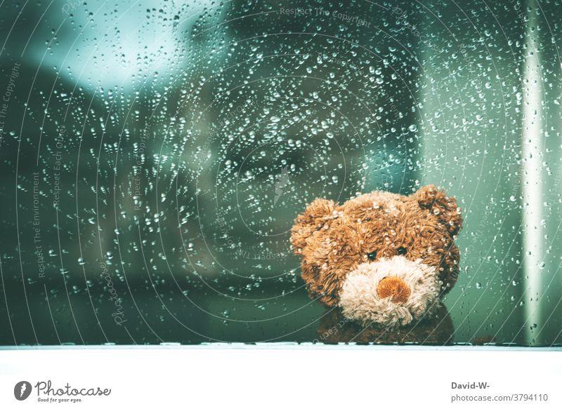 Regenwetter - Teddybär sitzt am Fenster und wartet auf besseres Wetter Kuscheltier warten Fensterscheibe drinnen Traurigkeit Herbst nass Regentropfen