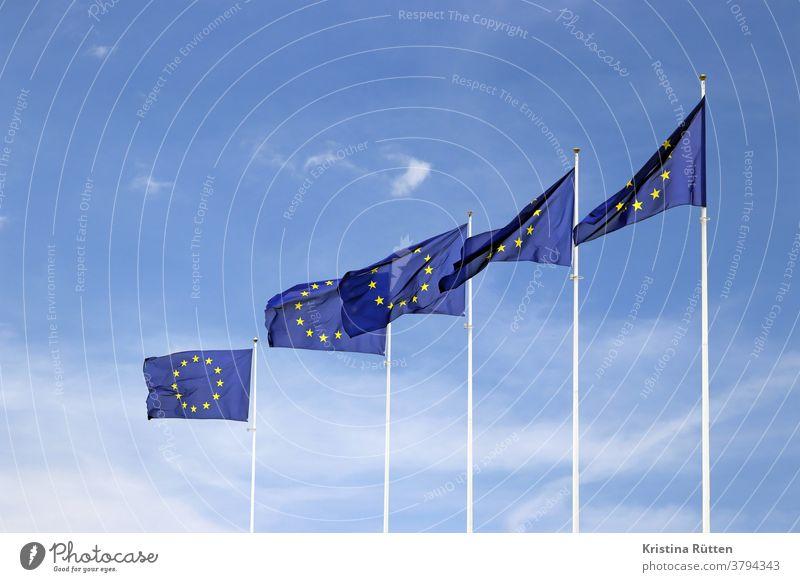 europaflaggen wehen im wind europäisch fahnen fähnchen europarat europäische gemeinschaft europäische union verbund gelb gold golden blau sterne sternenkranz