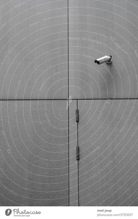 Überwachungskamera an grauer Außenwand Videokamera Kamera Außenaufnahme Sicherheit beobachten Überwachungsstaat Angst Wachsamkeit Wand Kontrolle