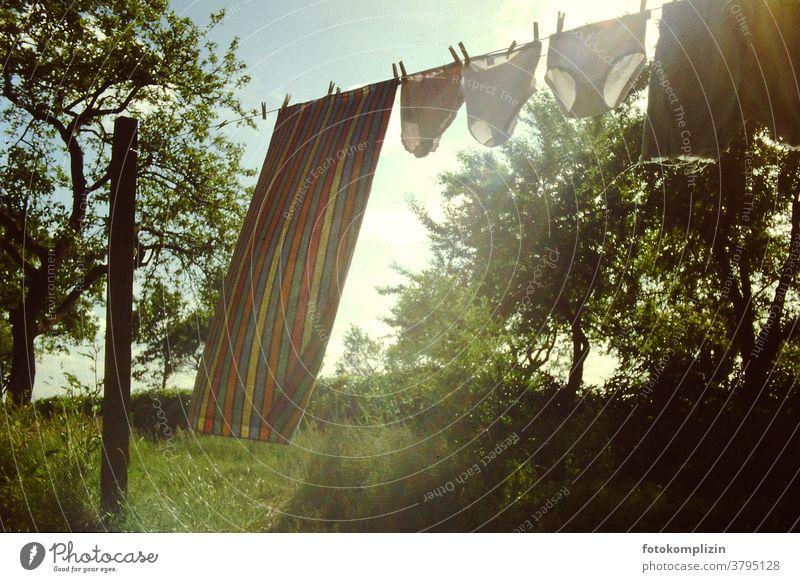 Wäscheleine mit drei Unterhosen und einem Handtuch auf einer wilden zugewachsenen Wiese mit Bäumen Wäscherei Haushaltsführung trocknen aufhängen Wäsche waschen