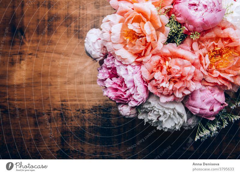 Erstaunlich frischer Strauss rosa Pfingstrosen Haufen Korallen Blume cerise Blumenstrauß Pastell geblümt Blütenblätter Tapete Postkarte Frühling Liebe Sommer