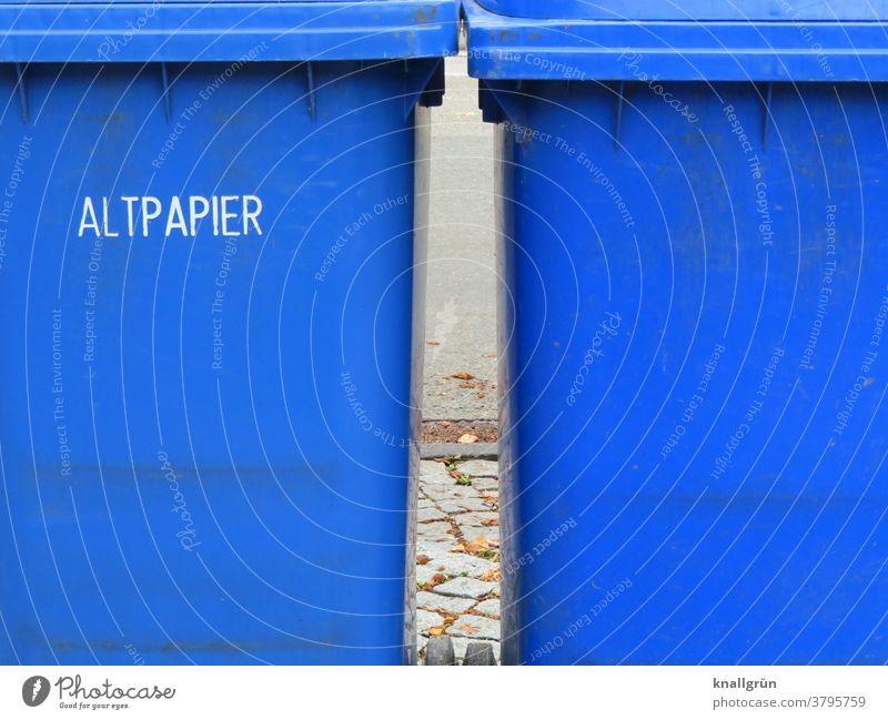 Zwei blaue Altpapiertonnen nebeneinander Recycling Müll Umweltschutz Müllbehälter Müllentsorgung Müllverwertung entsorgen Umweltverschmutzung wegwerfen