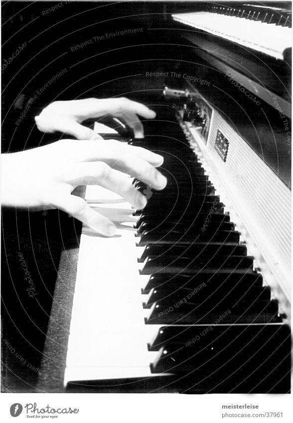 Fender Rhodes 01 Klavier E-piano Hand musizieren Freizeit & Hobby Musik Klaviatur berühren Musikinstrument Schwarzweißfoto